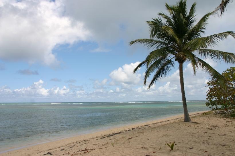 Puerto Rico 2011 096
