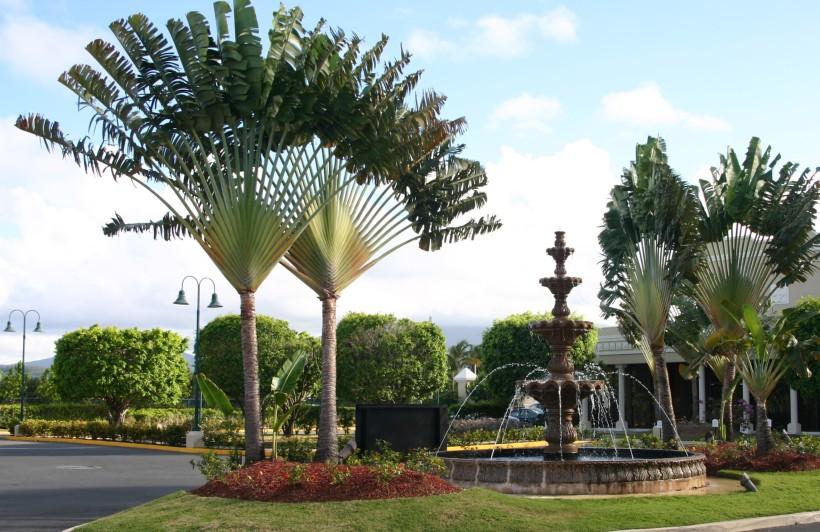 Puerto Rico 2011 109 (2)