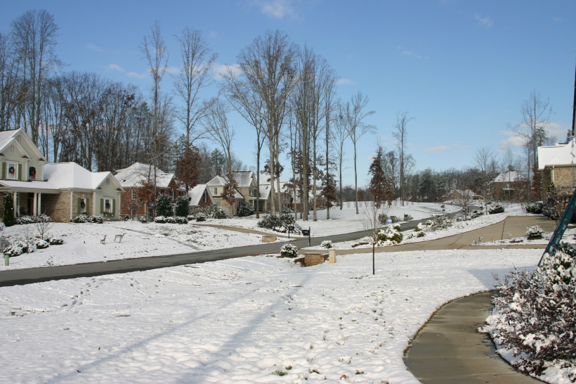 lennox-woods-first-snow-2010-036
