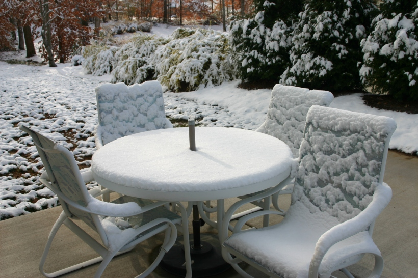 lennox-woods-first-snow-2010-027
